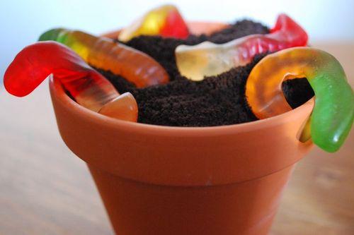 Dirt Dessert 1