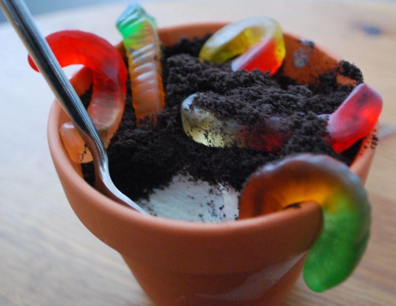 Dirt Dessert 2