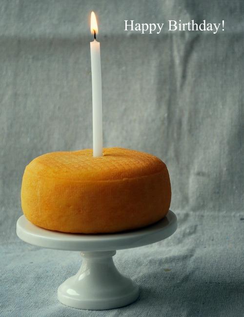 A Birthday Cheese Cake Family Bites